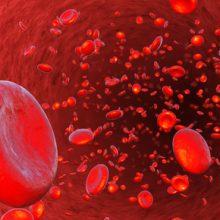 加圧トレーニング 千歳烏山 京王線:加圧と血流